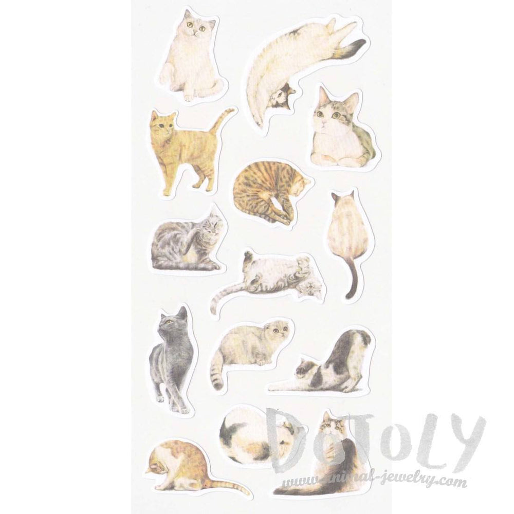 Realistic Kitty Cat Photo Print Flat Stickers for Scrapbooks | DOTOLY