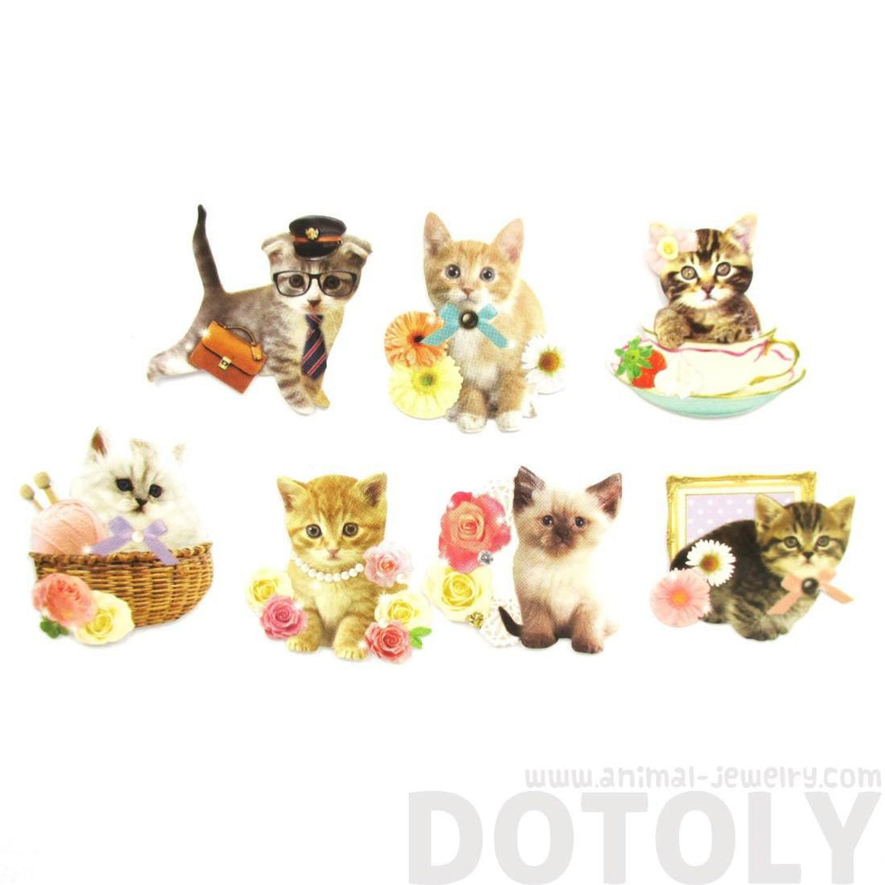 Realistic Kitty Cat Themed Photo Sticker Flakes From Japan | 70 Pieces