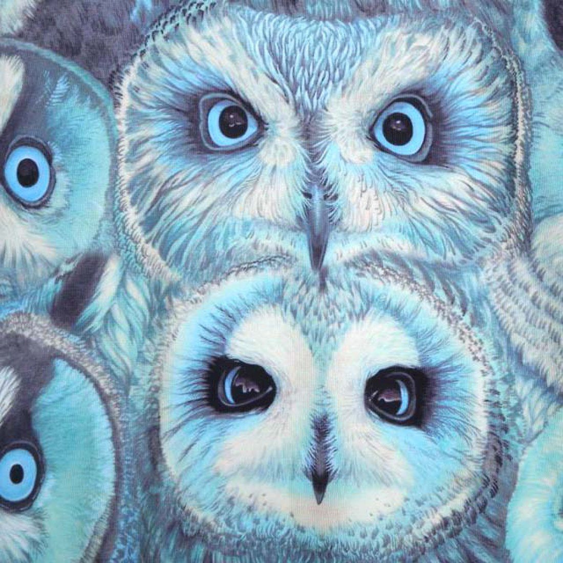 Realistic Owl Face Collage Graphic Print Pullover Sweater in Blue