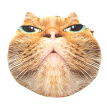 Stuck Up Orange Tabby Kitty Cat Face Shaped Coin Purse
