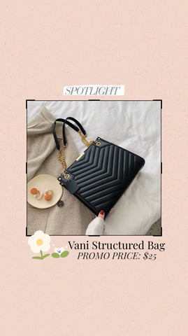 Vani Structured Bag