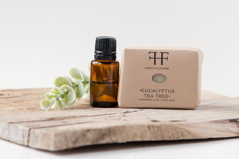 Soap - Eucalyptus Tea Tree- just made and ready to ship 12/13.
