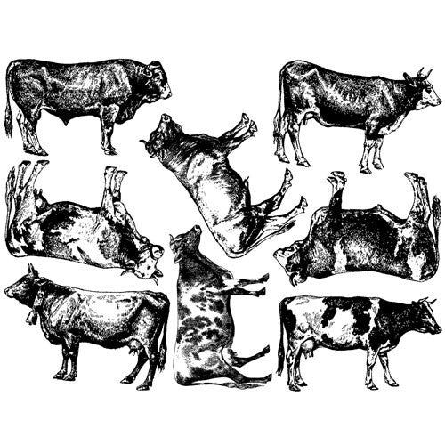 Decal Cows Black