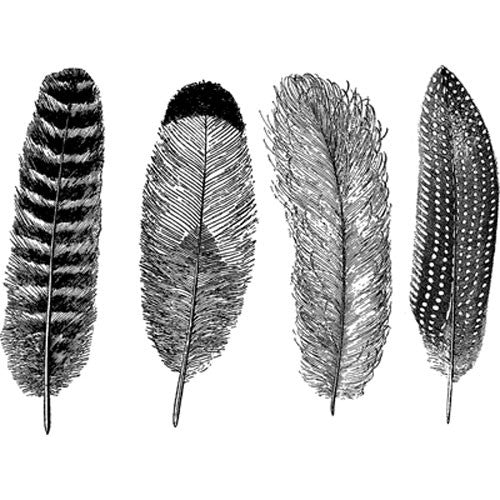 Decal Feathers High Temp