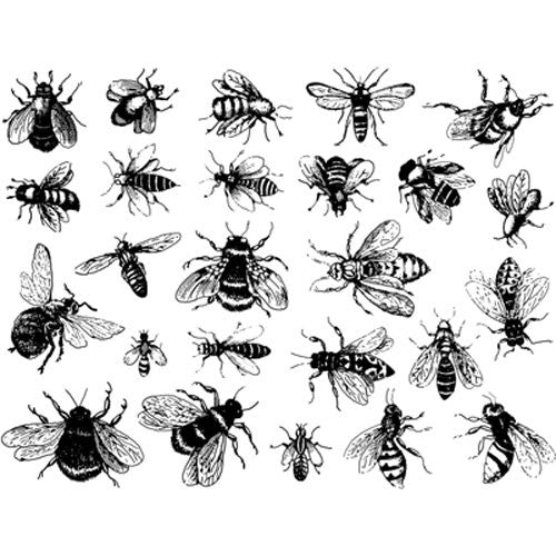 Decal Bees Black