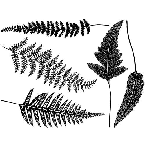 Decal Modern Ferns Black High Temp
