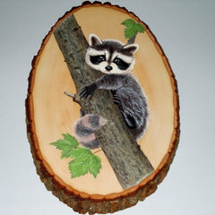Wooden Plaque - Baby Raccoon