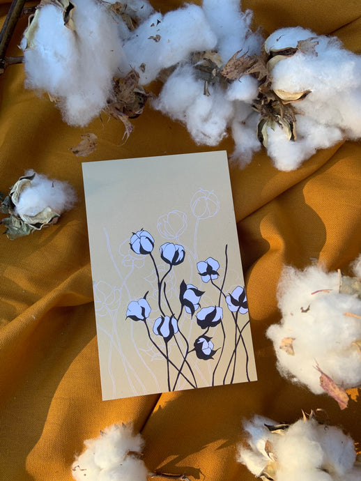 Raw Cotton Postcard