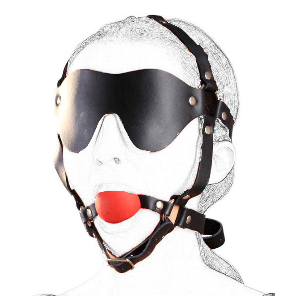 Head Harness w/ Blindfold & Muzzle Ball Gag