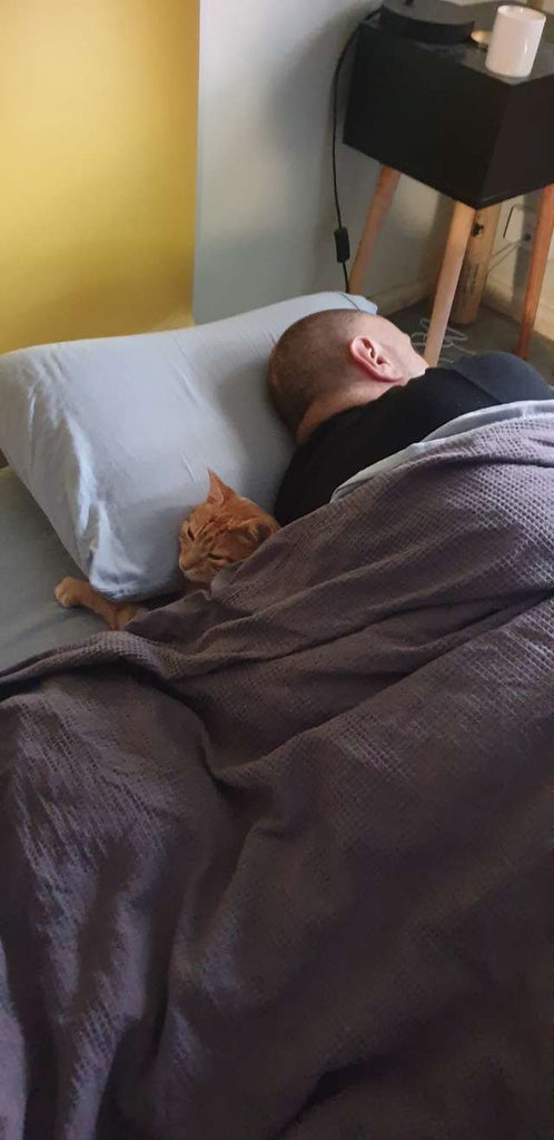 Cat Sneaks Over To His Neighbors' House Every Night For Sleepovers