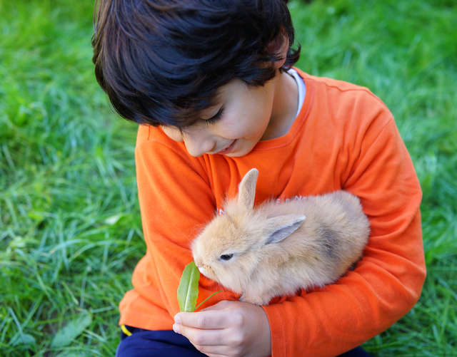 Why Do Kids Love Animals So Much?