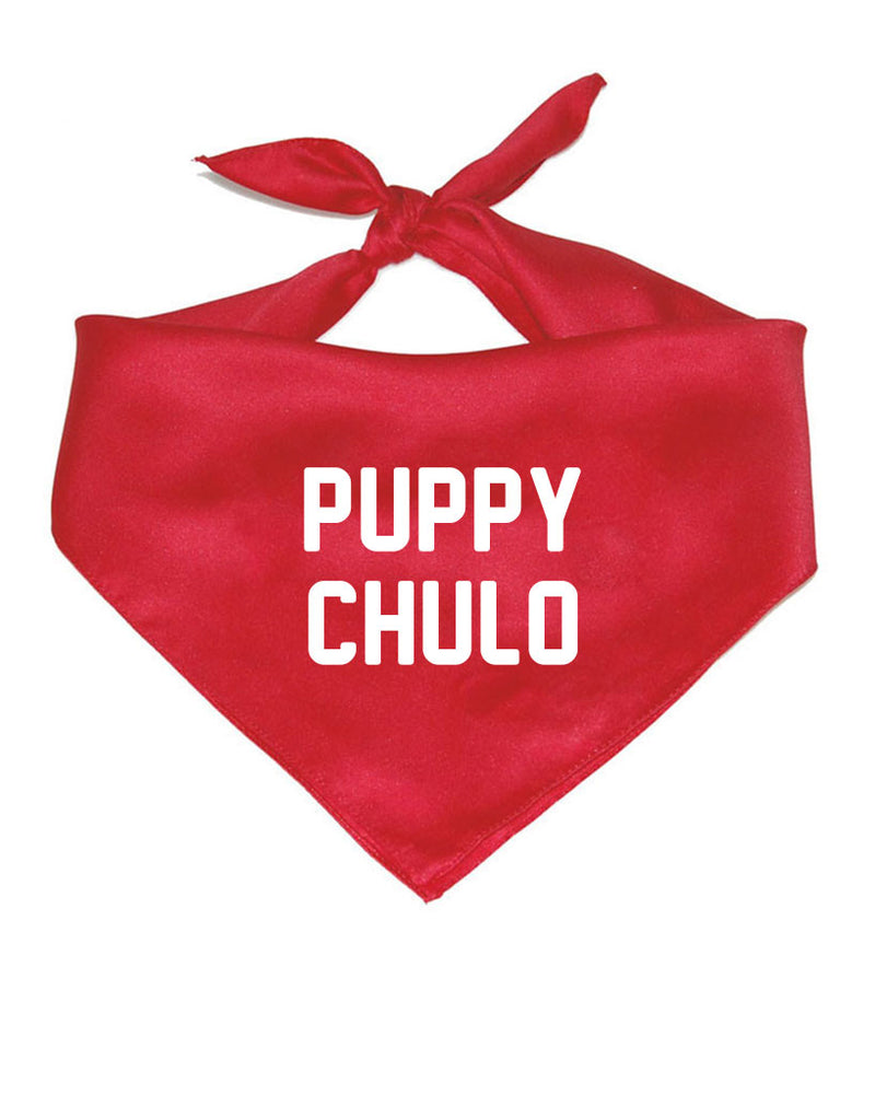 Accessory | Puppy Chulo | Pet Bandana