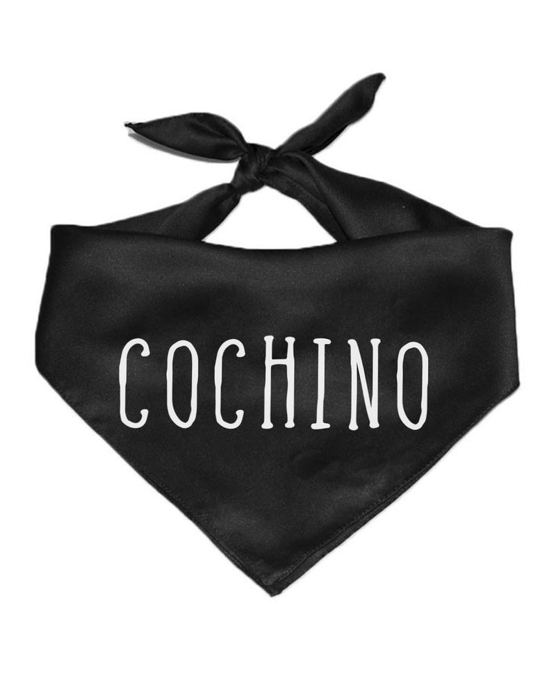 Pet | Cochino | Bandana