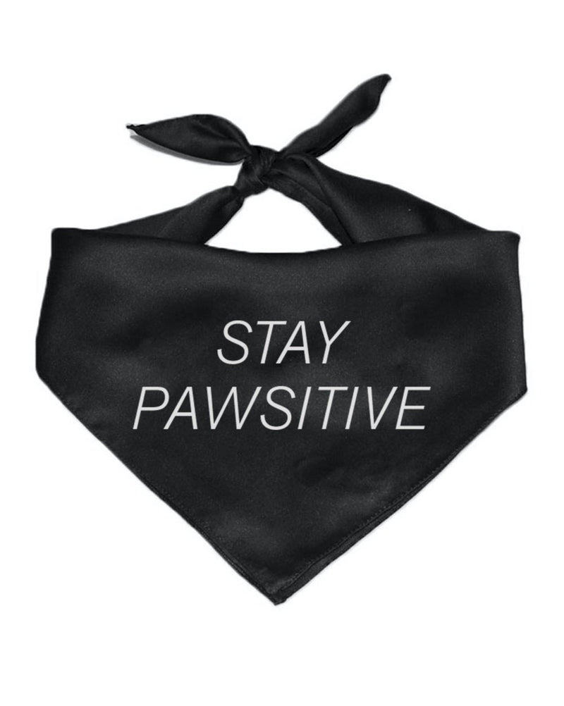 Pet | Stay Pawsitive | Bandana