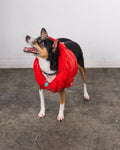Pet | East Coast | Puff Jacket