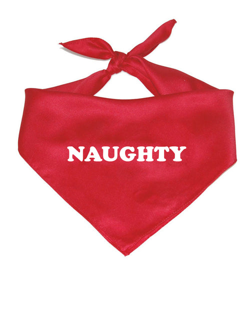 Pet | Naughty | Bandana