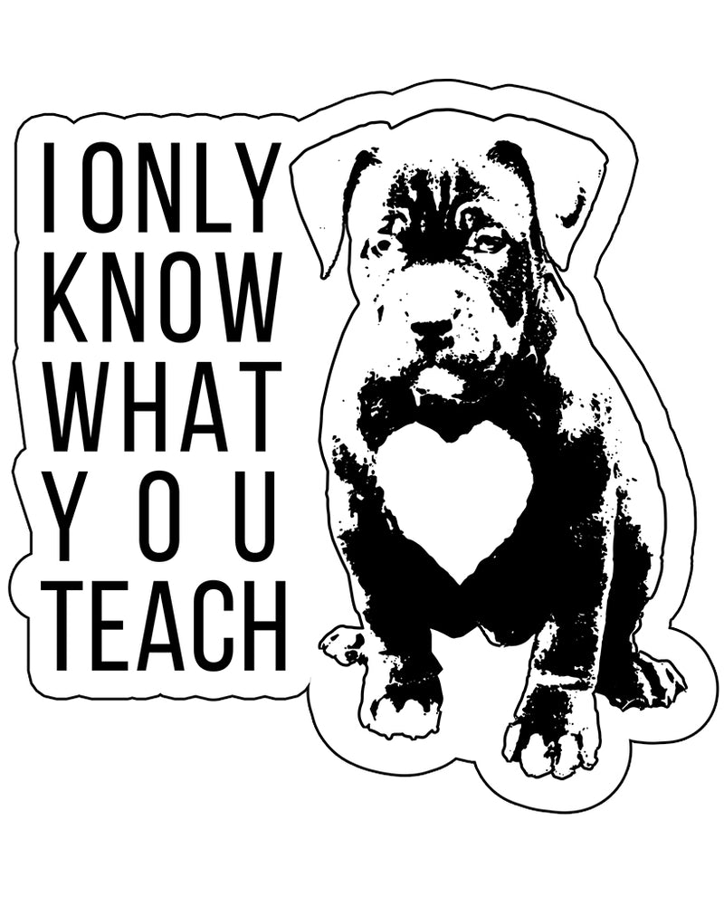 Stickers | What You Teach Pittie | Die Cut Sticker