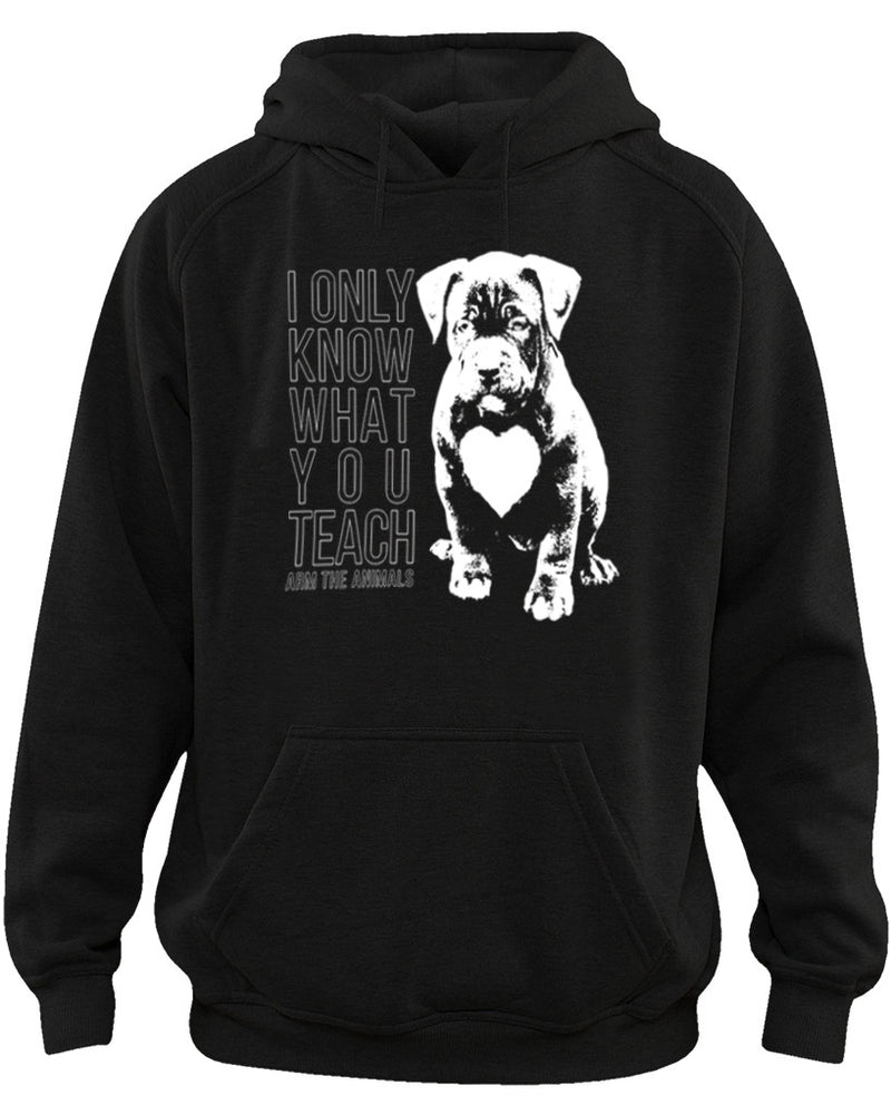 Men's | What You Teach Pittie | Hoodie