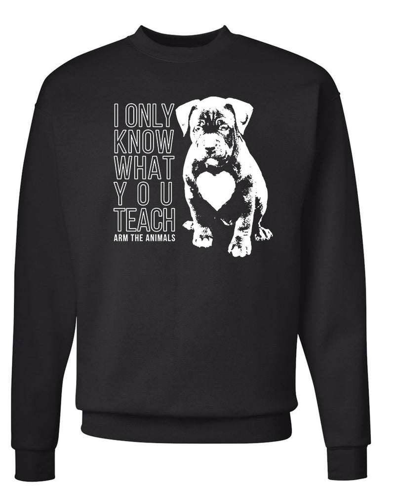 Men's | What You Teach Pittie | Crewneck Sweatshirt