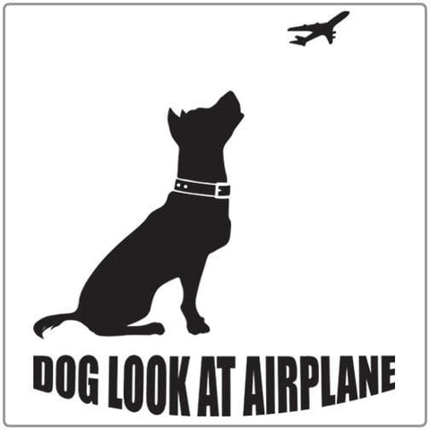 Dog Look at Airplane - T-shirt