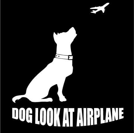 Dog Look at Airplane - Women's Tee