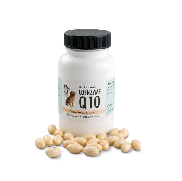 CoEnzyme Q10 for Cats - Luxurious Paws