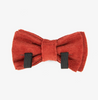 Saffron Bow Tie - Luxurious Paws