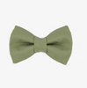 Dill Bow Tie - Luxurious Paws