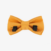 Turmeric Bow Tie - Luxurious Paws