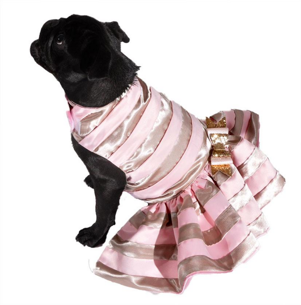 Gold and Pink Dog Dress - Luxurious Paws
