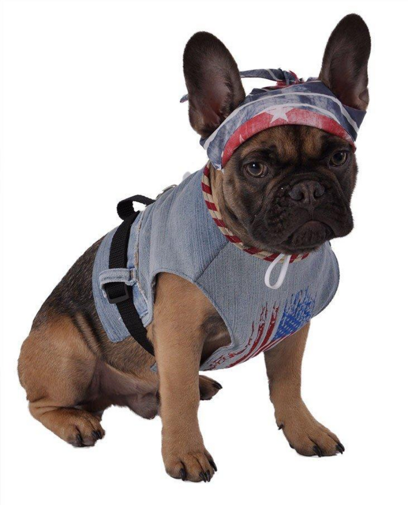 Dog Harness - American Flag - Luxurious Paws