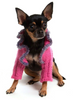 Deep Pink Dog Sweater Shrug with Heather Purple Trim at neck - Luxurious Paws