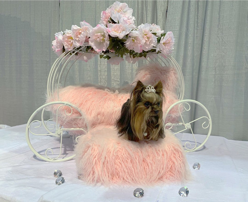 Flower Girl Dog Carriage - Luxurious Paws