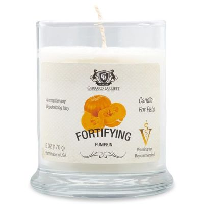 Fortifying Pumpkin Aromatherapy Deodorizing Soy Candle For Pets - Luxurious Paws