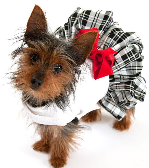 Silk Ruffles and Plaid Dress - Luxurious Paws