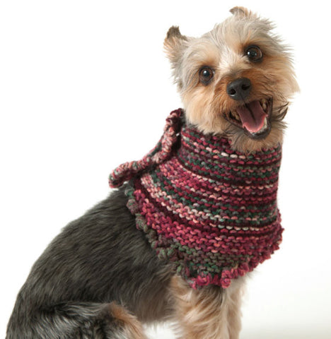 Crocheted Autumn Dog Bandana