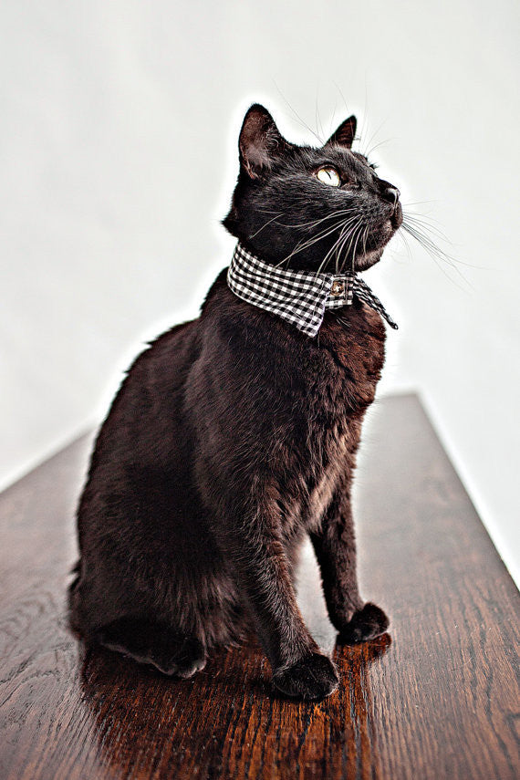 Gingham Pointed Cat Collar - Luxurious Paws