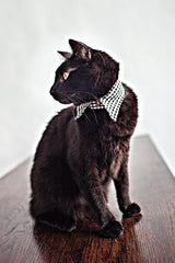 Gingham Cat Collar - Luxurious Paws