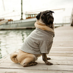 First Mate Dog Sweatshirt - Luxurious Paws