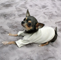 Striped Baby Tee - Luxurious Paws