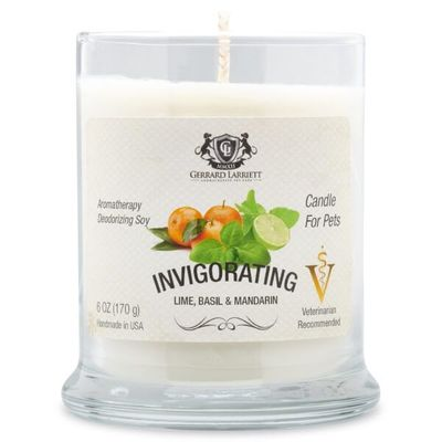 Invigorating Lime Basil & Mandarin Aromatherapy Deodorizing Soy Candle For Pets - Luxurious Paws