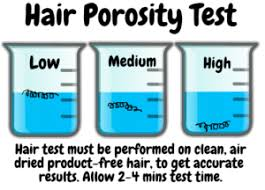 2 Easy Ways To Test Your Hair Porosity