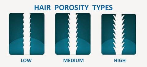 porosity type test