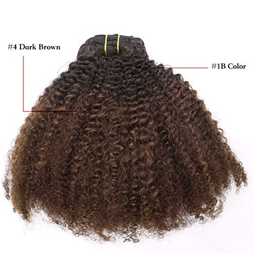 Brown OMBRE Color  4a-4b   -  Clip ins Set
