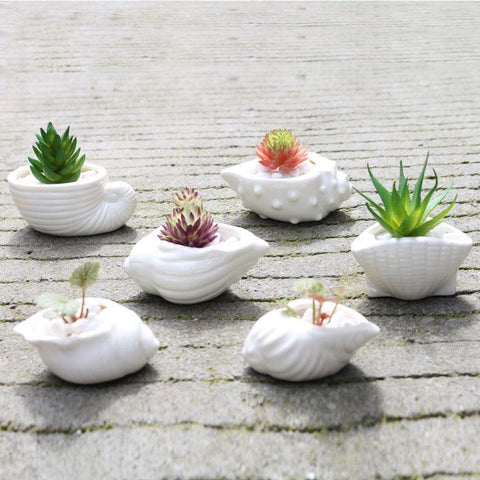 6pcs/set Mini White Small Flowerpot Shell Pot Holder