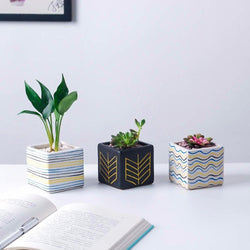 Ceramic Square Flowerpot Small Home Desk Decoration