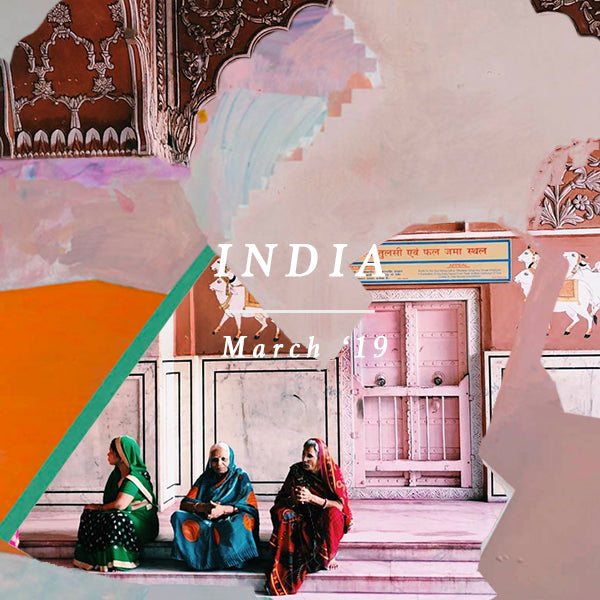 INDIA EXCURSION 14 MARCH - 19  MARCH 2019