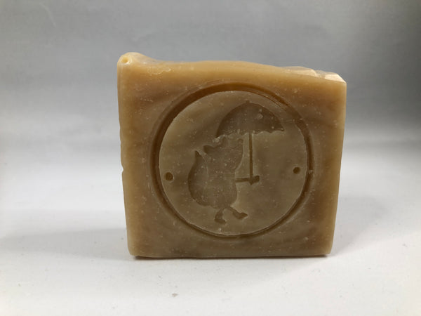 Natural plastic free dog shampoo