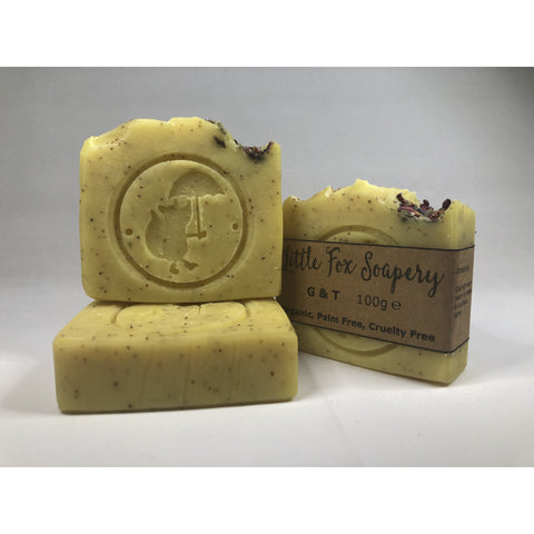 Natural plastic free soap