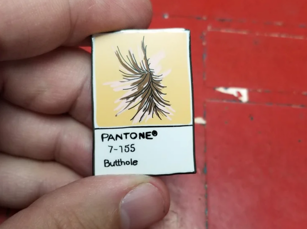 BUTTHOLE PANTONE PIN